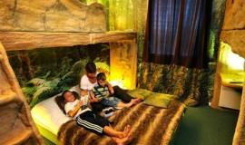 Lien vers l'article «Hôtel Jules Verne Premium **»