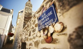 Lien vers l'article «Vélodyssée : La Côte Vendéenne et ses îles en hôtel 2**»