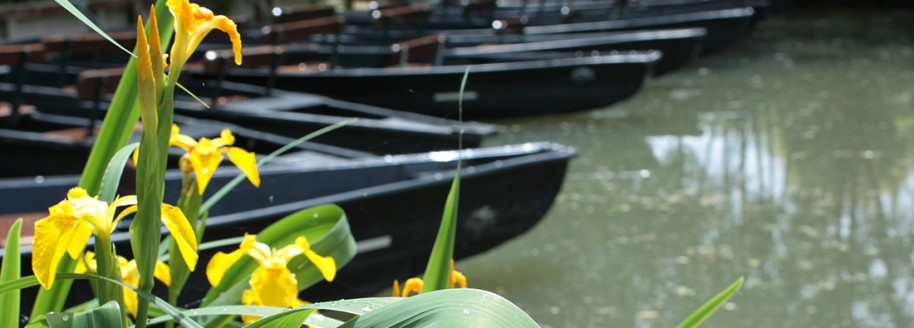 Venise Verte - Marais Poitevin - Vendée