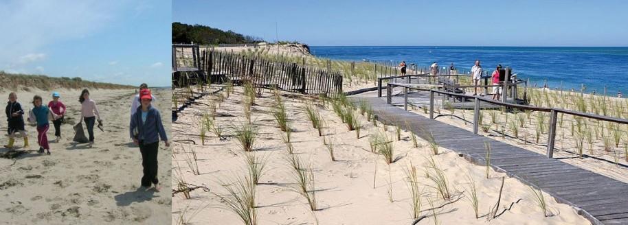 Milieu dunaire et laisse de mer - Classe de mer scolaires - Vendée