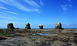Lien vers l'article «ENVIRONNEMENT… découverte de la côte rocheuse»