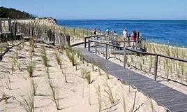 Lien vers l'article «ENVIRONNEMENT… découverte du milieu dunaire»