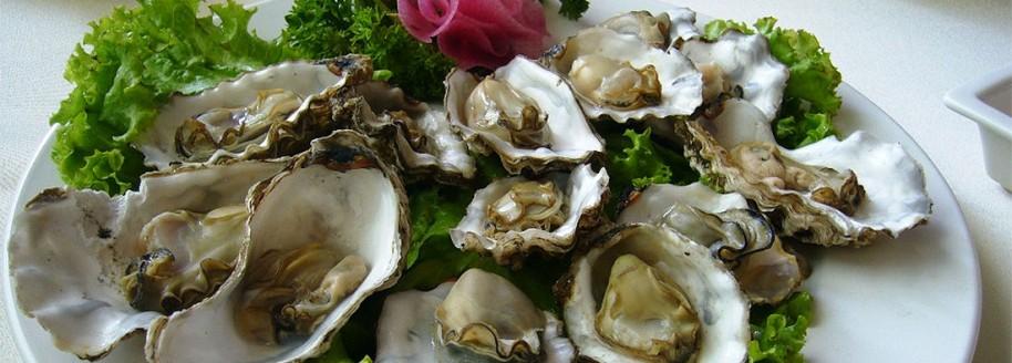 Dégustation d'huîtres Vendée Atlantique