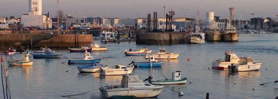 Port de pêche - Saint-Gilles-Croix-de-Vie - Vendée - © JCB