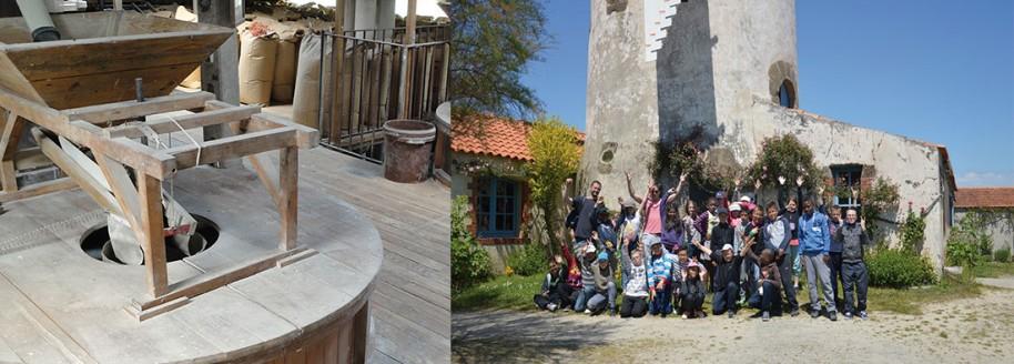 Moulin de Rairé - Sallertaine - Sorties scolaires et classes de mer en VendéeÉoliennes - Bouin - Vendée - © JCB