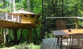 Lien vers l'article «La cabane dans les arbres»