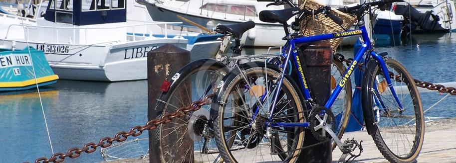 Randonnée vélo - Saint-Martin-en-Ré - Île de Ré - Charente-Maritime
