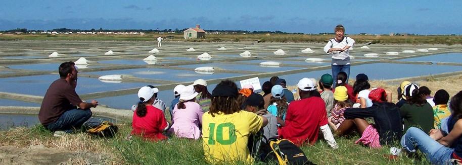 Marais salant - Île de Noirmoutier - Sorties scolaires et classes de mer en Vendée - © JCB