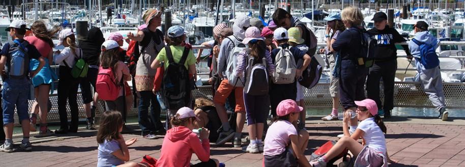 Port de plaisance - Saint-Gilles-Croix-de-Vie - Sorties scolaires et classes de mer en Vendée - © JCB