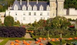 Lien vers l'article «Week-end dans le Val de Loire»