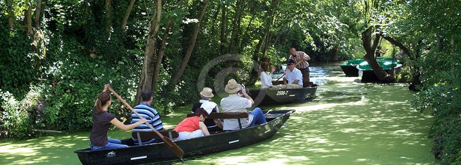 Promenade en barque - Venise Verte dans le Marais Poitevin - Vendée