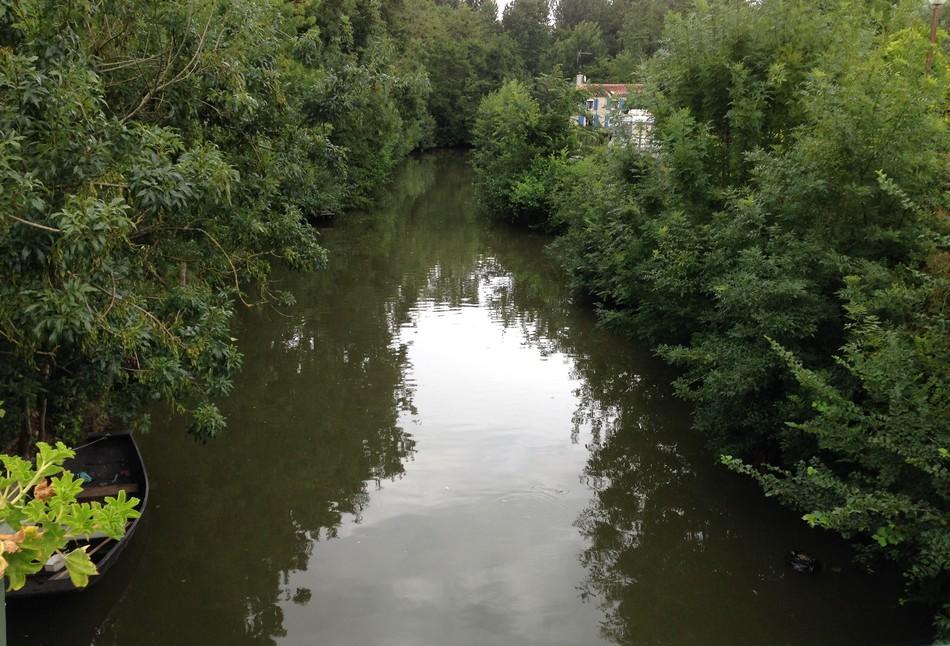Balade en barque le long de la Venise Verte
