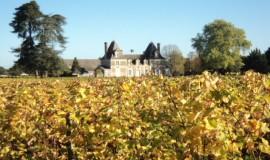 Lien vers l'article «Pause Angevine autour du vin»