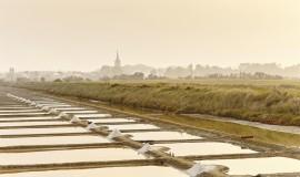 Lien vers l'article «Découverte des marais salants»