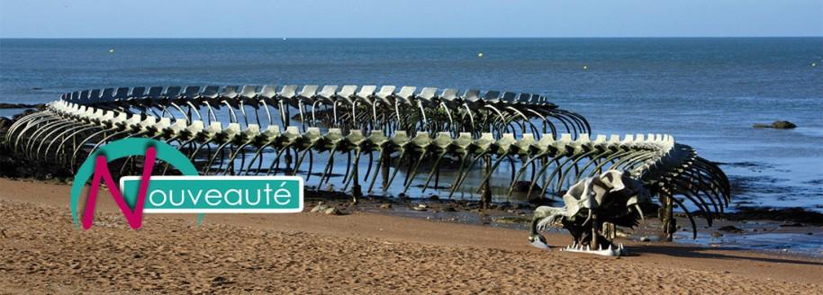 Le serpent d'océan de Huang Yong - Saint-Brévin-les-Pins - Loire atlantique - © JCB