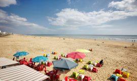 Lien vers l'article «Pays de sable, Pays de Monts»